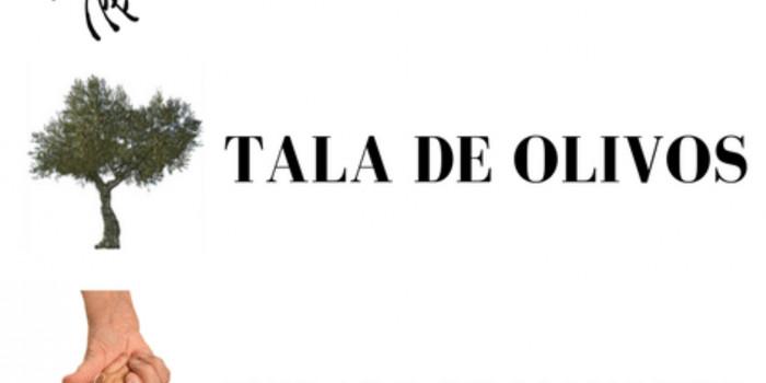 CHARLAS SOBRE ORIENTACIÓN PROFESIONAL EN APICULTURA, TALA DE OLIVOS Y CUIDADOS DE MAYORES EN ALMARGEN
